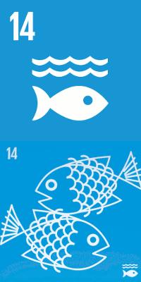 14 - Vida na Água